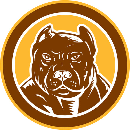 pitbull: Illustration of a pitbull dog head facing front set inside circle on isolated background done in retro woodcut style.