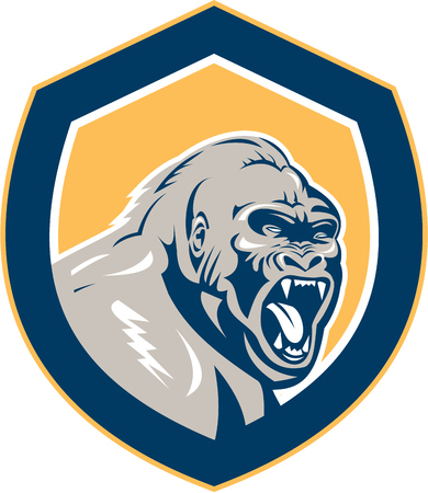 apes: Illustration of an angry gorilla ape head set inside shield crest on isolated background done in retro style.