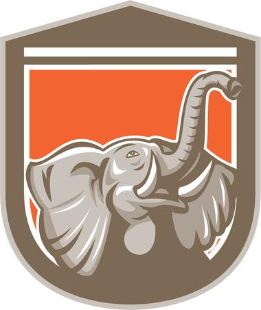 kel: Ilustrace slona hlavy s klu vzhlédl sadu uvnitř štítu hřebenu na izolované pozadí provedené v retro stylu. Ilustrace
