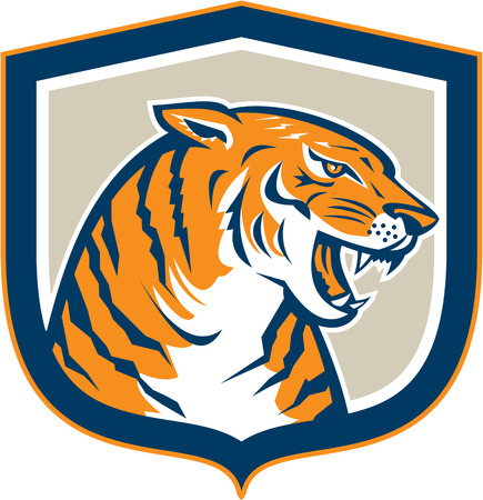 growling: Illustration of an angry tiger head sitting and growling viewed from side set inside shield crest on isolated background done in retro style.