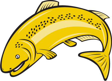 speckled trout: Illustration of a trout rainbow fish jumping viewed from the side on isolated white background done in cartoon style. Illustration