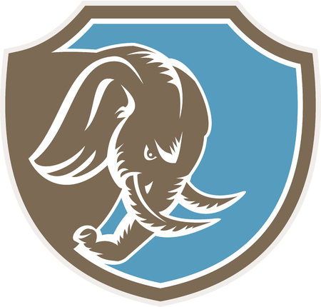 angry elephant: Illustration of an angry elephant head with tusk facing down viewed from the side set inside shield crest on isolated background done in retro style. Illustration