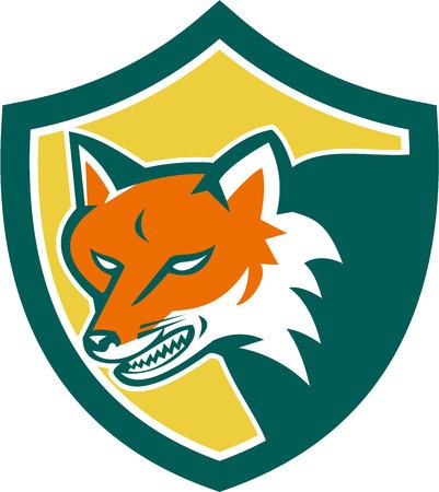 perro furioso: Ilustración de un zorro salvaje lobo perro enojado cabeza establece dentro cresta escudo sobre fondo aislado hecho en estilo retro.