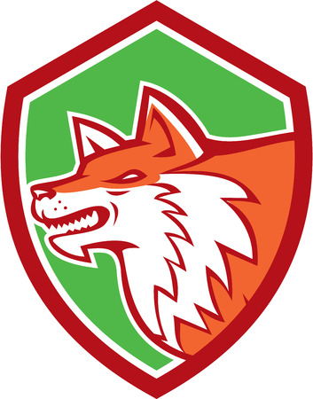 pounce: Illustration of an angry fox wild dog wolf head pouncing facing side set inside shield crest on isolated background done in retro style.