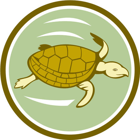 sea side: Illustration of a sea marine turtle swimming viewed from the side set inside circle on isolated background done in cartoon style. Illustration