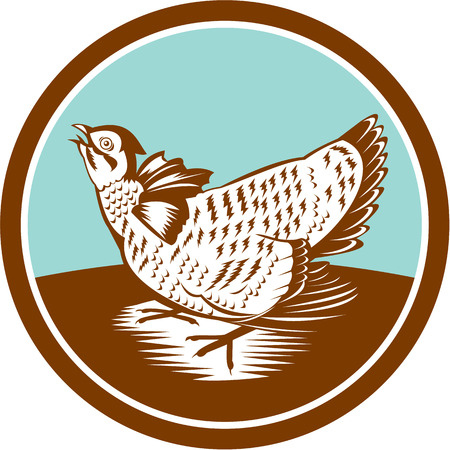 Illustration of a prairie chicken looking up set inside circle done in retro woodcut style on isolated background
