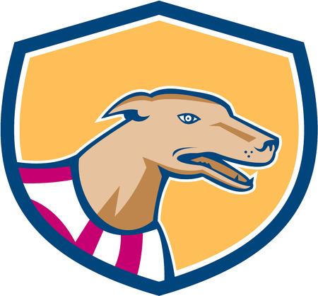 greyhound: Illustration of a greyhound dog  Illustration