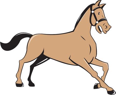 ajoelhado: Ilustra��o de um cavalo ajoelhando-se visto do lado ajustada no fundo branco isolado feito no estilo dos desenhos animados. Ilustração
