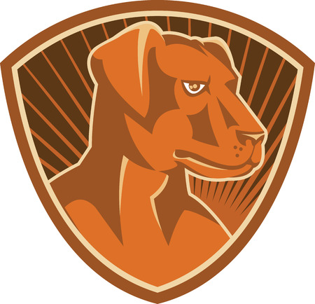 sheepdog: Illustration of a sheepdog farm working dog breed border collie set inside shield done in retro style.