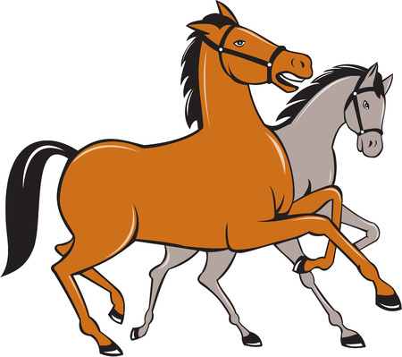 trotting: Illustration of two horses prancing side by side set on isolated white background done in cartoon style. Illustration
