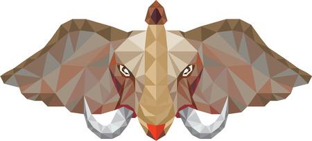 kel: Nízká polygon styl ilustrace slona hlavy s klu pohledu zepředu sady na izolované bílém pozadí. Ilustrace