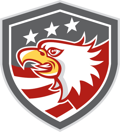american bald eagle: Illustration of an american bald eagle head viewed from the side with american stars and stripes set inside a shield crest done in retro style.