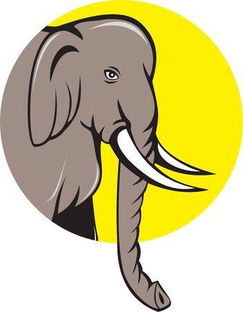 indian elephant: Ilustraci�n de una cabeza de elefante indio con colmillos visto desde el lado en el fondo aislado fij� el c�rculo interior hecho en estilo de dibujos animados.