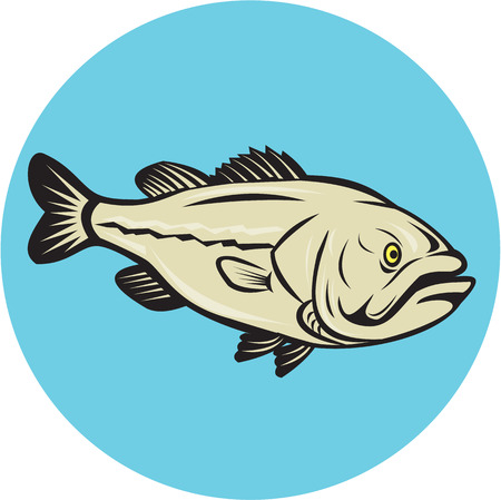 largemouth bass: Illustration of a largemouth bass fish viewed from side set inside circle done in cartoon style on isolated background.
