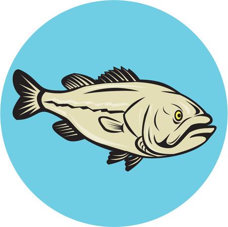 largemouth bass: Ilustraci�n de un pez lobina negra visto desde el conjunto de lado dentro del c�rculo hecho en estilo de dibujos animados sobre fondo aislado.
