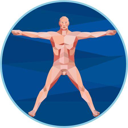beine spreizen: Low Polygon-Stil Abbildung auf dem Da Vinci Mann Vitruvian Man m�nnlichen menschlichen Anatomie, die einen m�nnlichen Spread Eagle Spreizarme von vorne Satz im Kreis auf wei�em Hintergrund eingestellt angesehen.