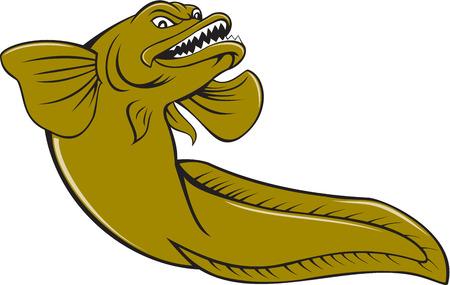 lota: Ilustraci�n de un eelpout enojado, familia de los peces con aletas radiadas Zoarcidae, visto desde un �ngulo bajo sobre fondo blanco aislado hecho en estilo de dibujos animados.
