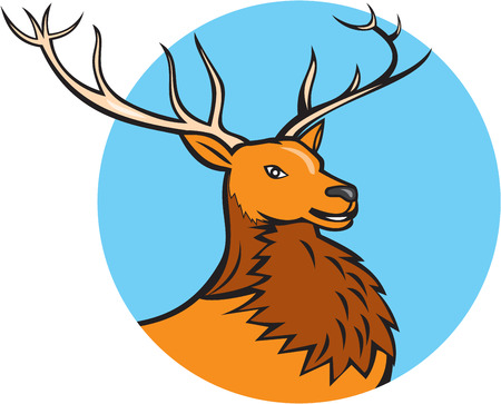 deer buck: Illustration of a red stag deer buck head facing side set inside circle on isolated  background done in cartoon style.