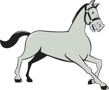 trotando: Ilustraci�n de un caballo al trote galope ve desde el lado situado en el fondo blanco aislado hecho en estilo de dibujos animados.