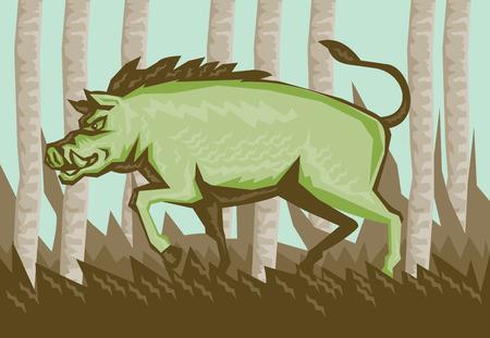 jabali: Ilustraci�n de estilo de grabado de un jorobado cerdo jabal� atacante en el bosque visto desde el lado con bosques de �rboles en el fondo.