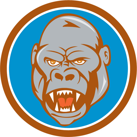 ape: Illustration of an angry gorilla ape head set inside circle on isolated background done in cartoon style. Illustration