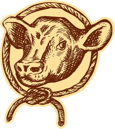 Ets gravure handmade stijl illustratie van koe stier hoofd naar de voorkant set binnen cirkel touw vastgebonden in een knoop. Stock Illustratie