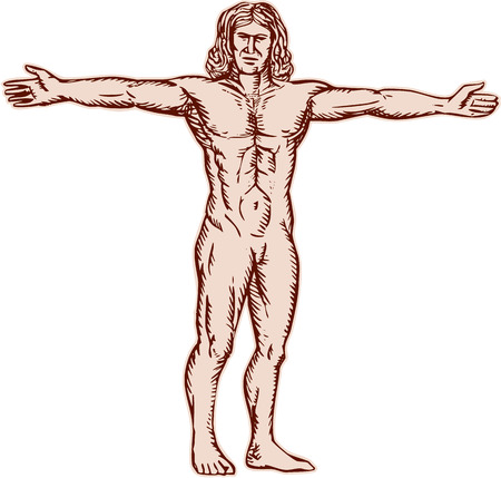 beine spreizen: Radierung Stich handgefertigten Stil Illustration vitruvian Mann mit den Armen an der Seite verteilt nach vorne auf weißem Hintergrund.