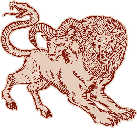Etching engraving handmade style Illustration of a Chimera, Greek mythical creature with head of a lion and goat and tail that ended in a snake's head viewed from side on isolated background. Illustration