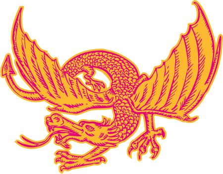 edad media: Estilo de ilustración hecha a mano grabado Grabado de un dragón medieval mirando hacia el lado visto de frente fijó en el fondo blanco aislado.