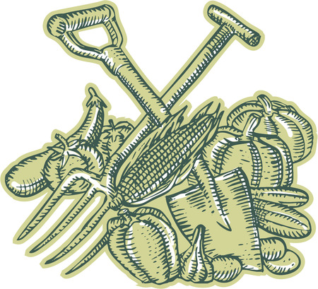 woodcut: Etching engraving handmade style illustration of spade, pitchfork, crop, harvest, vegetables on isolated white background.