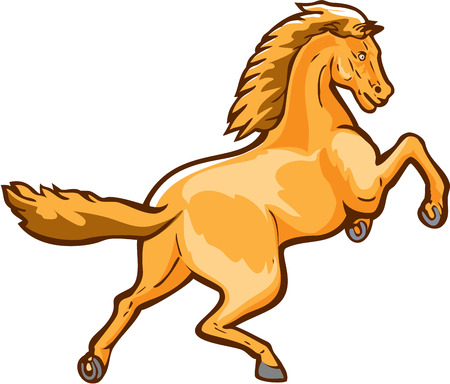 colt: Illustration of a colt horse prancing viewed from rear set on isolated white background done in retro style.