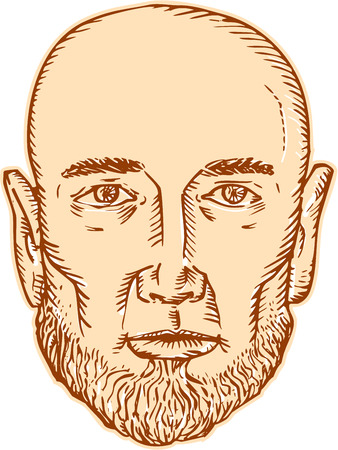 front of the eye: Etching engraving handmade style illustration of a bald head bearded male facing front set on isolated white background.