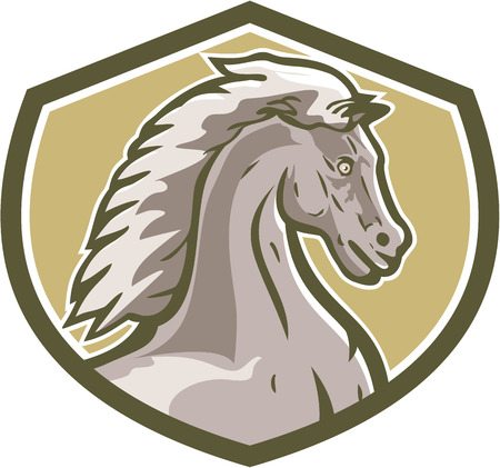 colt: Illustration of a colt horse head viewed from the side set inside shield crest on isolated background done in retro style.