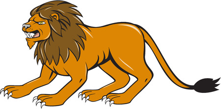 crouching: Illustration of an angry lion big cat roaring crouching viewed from the side set on isolated white background done in cartoon style.