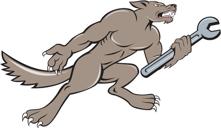 looking up: Illustration of a wolf mechanic holding spanner looking up viewed from side set on isolated white background done in cartoon style.