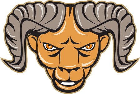 bighorn: Illustration of a ram head facing front set on isolated white background done in cartoon style.