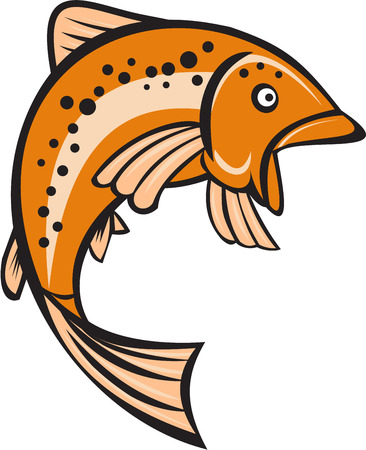 speckled trout: Illustration of a trout rainbow fish jumping up viewed from the side set on isolated white background done in cartoon style. Illustration