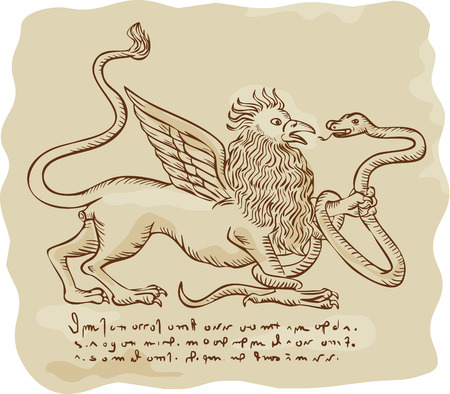 griffon: Illustration of a griffin fighting a serpent snake Illustration