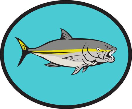 Illustration of a yellow tail kingfish