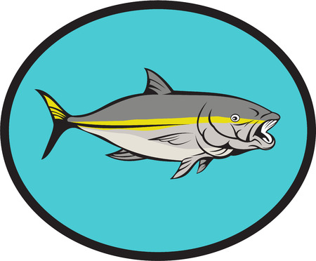 Illustration of a yellow tail kingfish