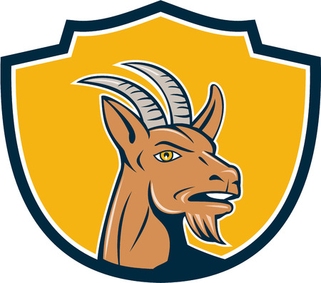 capra: Illustration of mountain goat head looking to the side set inside shield crest on isolated background done in cartoon style.