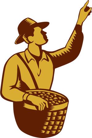 corbeille de fruits: Illustration d'un fruit travailleur fruit picker portant un chapeau portant un panier plein de fruits pointant vers le haut, ensemble, intérieur sur fond blanc isolé fait dans le style de gravure sur bois rétro.