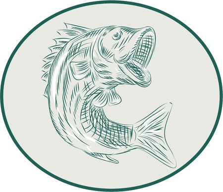 largemouth bass: Etching engraving handmade style illustration of a largemouth bass fish viewed from the side set inside circle on isolated background.
