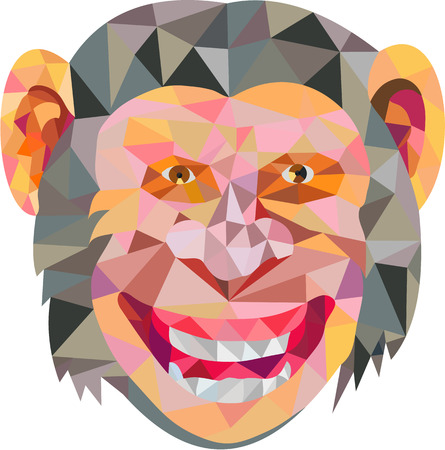 front facing: Low polygon style illustration of chimpanzee head smiling facing front set on isolated white background.