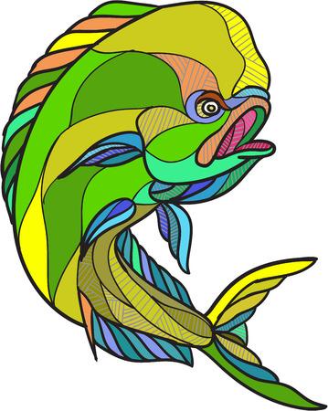 dorado: Drawing sketch style illustration of a dorado dolphin fish mahi-mahi jumping on isolated white background. Illustration