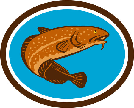 coney: Illustration of a burbot, gadiform (cod-like) freshwater fish, viewed from a low angle set inside oval shape done in retro style.