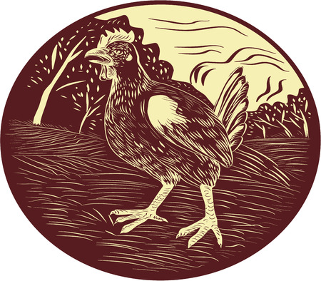 linocut: Illustration of a hen in a farm with trees in the background set inside oval shape done in retro woodcut style. Illustration