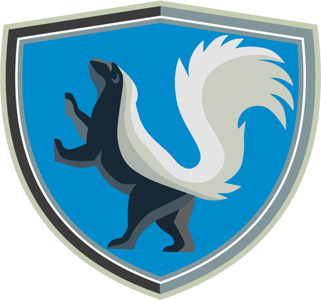 Illustration of a skunk prancing viewed from the side set inside shield crest set on isolated background done in retro style. Vector Illustration