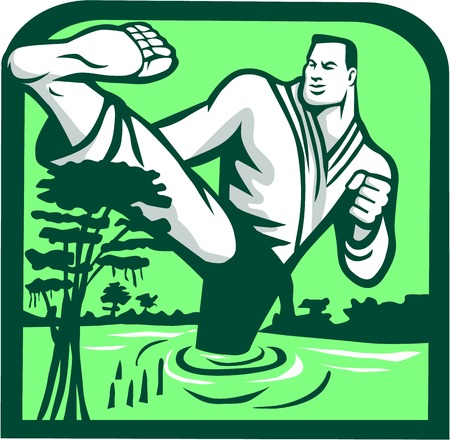 Illustration of a marital arts fighter kicking cypress tree on swamp or bayou set inside shield shape done in retro style. Illustration