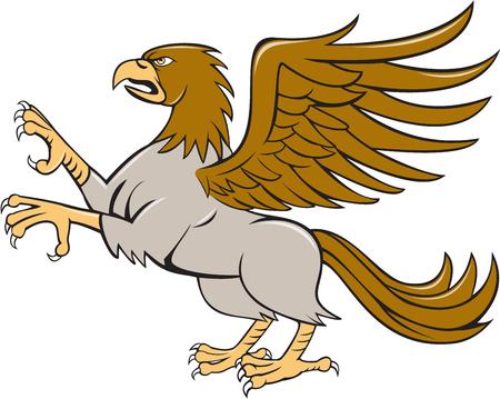 cabeza de caballo: Ilustración de un hipogrifo o hipogrifo, criatura legendaria con los cuartos delanteros de un águila y los cuartos traseros de un caballo encabritado que muestran garras establecidos en el fondo blanco aislado visto desde el lado hecho en estilo de dibujos animados.